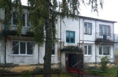 1-komnatnaya-selo-igumnovo-kstovskiy-rayon фото