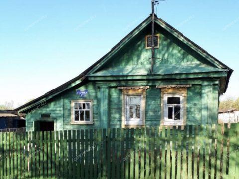 dom-derevnya-prudy-bogorodskiy-municipalnyy-okrug фото