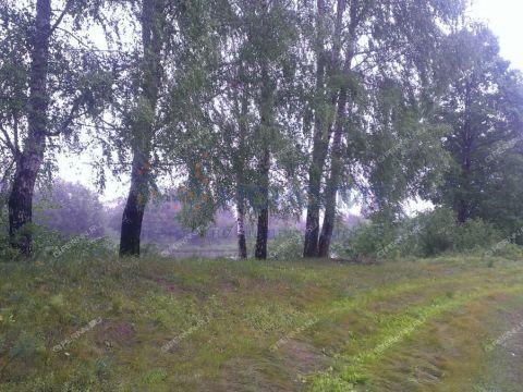 gorod-vyksa-gorodskoy-okrug-vyksa фото