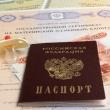 Россиян ограничат в возможностях использования материнского капитала - лого